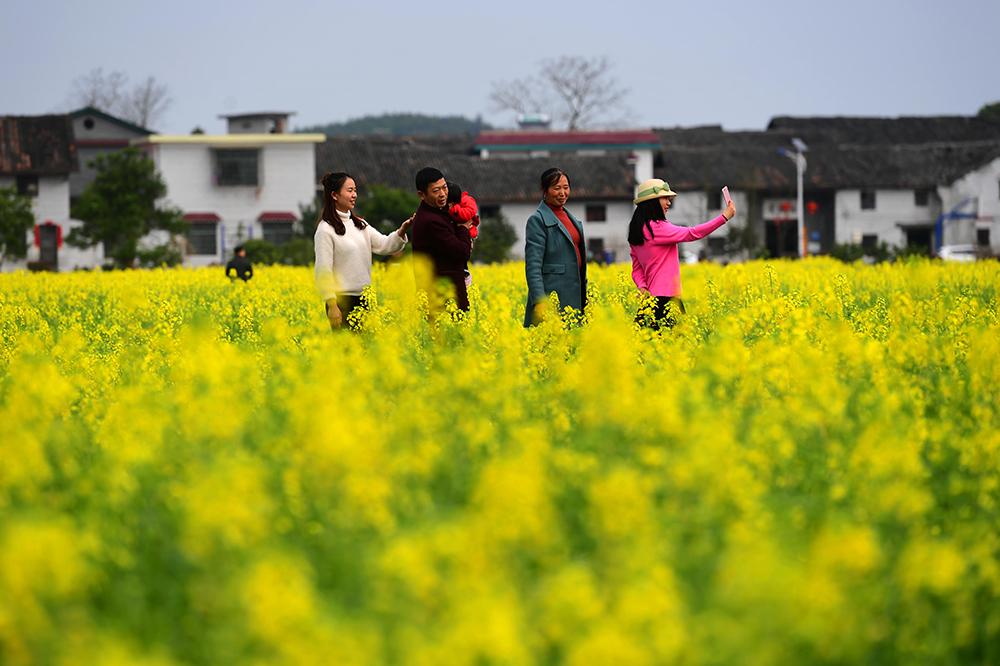 东江湖,春天